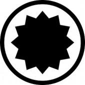 12 лучевая звезда Spline M - биты